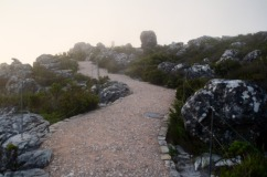 Path on Table Mountain